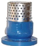 SS Strainer mit Silence Check Foot Valve