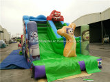 Adults를 위한 2016 새로운 Finished Fashionable Commercial Inflatable Slide
