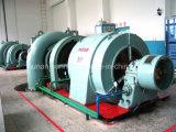 Equipamento do gerador de turbina de Francis da estação das energias hidráulicas/hidro gerador da energia hidráulica do gerador de turbina (da água)