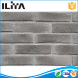 Mattone nell'Iraq, mattone per il rivestimento della parete, mattone leggero dell'argilla (YLD-20044) dell'argilla di mattone di colore rosso di prezzi bassi della coltura di Atificial da costruzione dei materiali