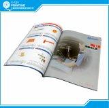 Cópias do profissional do folheto do compartimento do livro do catálogo
