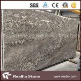 De Braziliaanse Plak van het Graniet van Bianco Antico voor Countertop