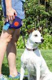 Trela retrátil livre do cão de animal de estimação do emaranhado com luz e saco