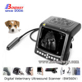Scanner vétérinaire d'Ultrsound de Poignet-Dessus de Digitals