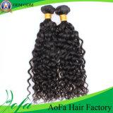 Fabrik-Preis-Jungfrau brasilianische Remy lockiges Haar-Menschenhaar-Extension