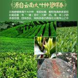 Tè verde dei grandi fogli del Yunnan