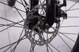Bicicleta elétrica da bicicleta da montanha do baixo preço 36V 250W MTB da fábrica