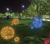 Indicatore luminoso decorativo di natale del LED - castello per la decorazione quadrata