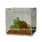 Le meilleur habitat de Selling Acrylic Reptile Terrarium à vendre