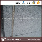 Natural popolare Black White Granite Slab per Floor/Wall