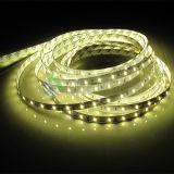 Luz IP65 impermeable de la cuerda de la alta calidad 2835 240LEDs LED