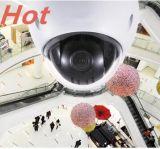 Volles HD Netz 2 Megapixel Mini-PTZ Abdeckung-Kamera
