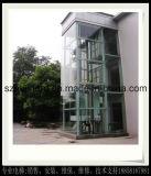 Домашний подъем лифта села используемый дома