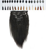 Human brasileño Hair Clip en Hair Extension Natural Hair