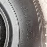 Neumáticos grúa 385 / 95r25 445 / 95r25 Neumático Radial OTR 14.00r25 con buena calidad
