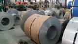 Bande différente d'acier inoxydable de largeur pour le traitement industriel