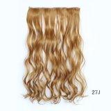 Heißer Verkaufs-preiswerte lockiges Haar-Extension mit 5 Klipps Ryst0496