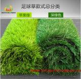 子供のための環境の友好的で総合的な草