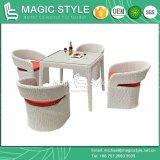 Jardim do Rattan que janta jogo de jantar de vime sintético ajustado com a cadeira do pátio do coxim (estilo mágico)
