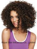 Capelli ricci della donna di colore della parrucca di Short europeo ed americano di modo