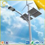 純粋なWhite 60W LED Wind Solar Hybrid Street Lights
