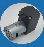Heißwasser-Pumpe der Gleichstrom-elektrische Pinsel-Membrane24v