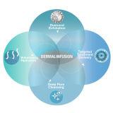 De Schil Dermabrasion van het Water van de Verwijdering van het Litteken van het Kristal van de Hydratie van Aqua (WD10)