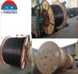 VV 0.6/1 quilovolts de cabo distribuidor de corrente isolado PVC (condutor de cobre)