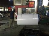 Branco de aço galvanizado Cor-Revestido da bobina