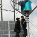sistema chiaro di Turbinefor del vento verticale 600W sulla montagna