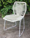 Mordenの屋外の屋内余暇の鋼鉄藤のTropicaliaの椅子