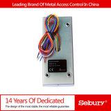 Sistema do controlo de acessos do projeto do Anti-Vândalo do metal--K2