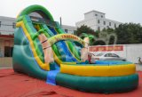 Tropisches Inflatable Water Slide mit Pool (CHSL250)