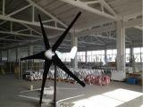 600W de horizontale Turbine van de Wind van de As (100W-20kw)