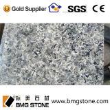 Guter Preis-chinesische blaue Leopard-Granit-Fliesen u. Platten