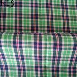 Baumwollpopelin-Garn gefärbtes Gewebe 100% Rlsc50-13