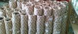 Schmieröl Seal mit Industry Price Deep Groove Ball Bearing (6200)