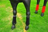 耐久のネオプレンの馬の足の覆い