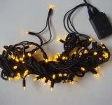 La festa illumina (RY-SL) gli indicatori luminosi solari del prato inglese della stringa