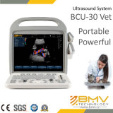 Bcu30 Color Doppler Ultrasound System für Pet