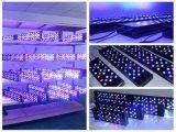 빛 4개 피트 산호초 탱크 암초 취미자 LED 수족관