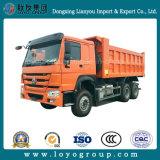 Het 10-wiel 371HP 18m3/20m3 van Sinotruk HOWO 6X4 de Vrachtwagen van de Kipwagen