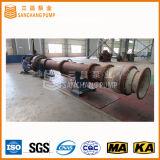 El LC pulsa la bomba de desecación de las aguas residuales verticales de la mina/la bomba vertical de la turbina/la línea vertical bomba del eje