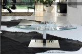 Tabella di vetro quadrata del salone (TB-S170)