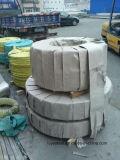 bobina do aço inoxidável da tira do aço 316 316L inoxidável