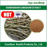 Выдержка Nobile Dendrobium с сертификатом ISO