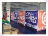 Aerostato cubico dell'elio delle grandi pitture complete con il marchio personalizzato