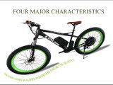 Vélo électrique de meilleur PAS chinois de montagne gros en vente de l'Europe