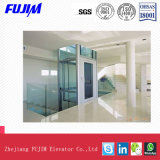 Ascenseur guidé en verre de villa de levage de maison d'ascenseur du passager ISO9001