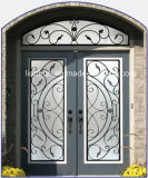 Portas de entrada do ferro feito e do vidro